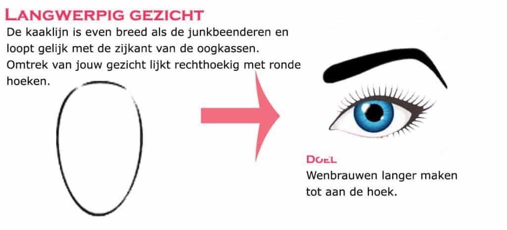 wenkbrauwtype bij Langwerpig gezicht Doel: Wenkbrauwen langer maken tot aan de hoek